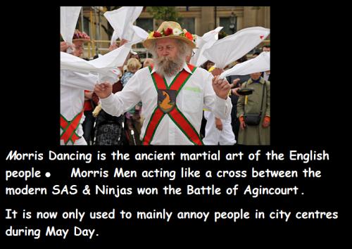 Morris ninja