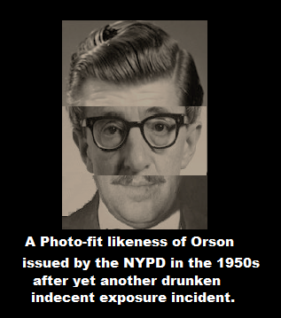 Orson photo fit pic